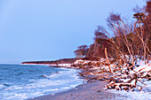 Winter, Beach, Stroll, Baltic Sea, Darss, National Park, Bodden, Germany
