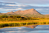 Hlidarfjall, Bergm Myvatn, Spiegelung, See, Sonnenuntergang, Island, Europa
