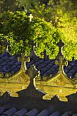 Cemetery in Andratx, Mallorca, Balearics, Spain