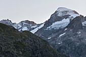 Gross Furkahorn, Grimsel Pass, Bernese Oberland, Switzerland