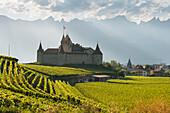 Chateau d'Aigle, Aigle, Vaud, Switzerland