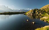 Hikers at Lac de Cheserys, Aiguilles Verte, Grandes Jorasses, Mont Blanc, Haute-Savoie, France