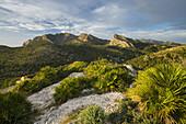 Mountains at Sant Elm, Majorca, Baleares, Spain