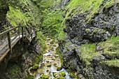 Waterhole cliff, Salzatal, Styria, Austria