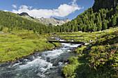 Bridge over the Debantbach, Debanttal, national park Hohe Tauern, East Tyrol, Tyrol, Austria