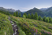View from Hirschbichl to Defereggental, hiking trail, Hutner (2885m), Hohe Tauern, East Tyrol, Tyrol, Austria