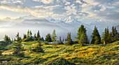 Émosson, Wallis, Schweiz (Vordergrund), Aiguille Verte, Haute-Savoie, Frankreich (Hintergrund)