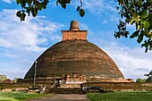 Jetavanaramaya Stupa, Sacred City of Anuradhapura, North Central Province, Sri Lanka, Asia.