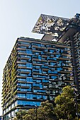 General Views showing One Central Park which is built around Chippendale Green. The bulding itself was designed by award-winning Parisian architect Jean Nouvel and the vertical gardens designed by the artist and botanist Patrick Blanc. Close up shot of a