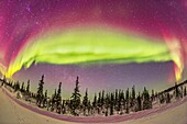 The aurora borealis, the Northern Lights, on Feb 21, 2015, from tne Churchill Northern Studies Centre, Churchill, Manitoba, This is looking north with an ultrawide 15mm lens taking in about half the sky from west (left) to east (right) and with the zenith