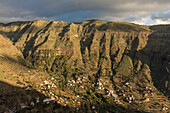 cultural landscape, palms, hill farm terraces, Valle Gran Rey, La Gomera, Canary Islands, Spain
