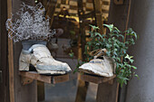 Shoes with flowers, Venedig, Venezia, Venice, Italia, Europe