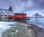 Typical red houses in Reine landscape with its cold sea and snow capped peaks, Lofoten Islands Norway Europe