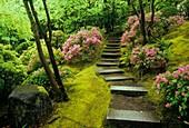 Natural Garden stairway, Portland Japanese Garden, Washington Park, Portland, Oregon.