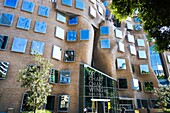 The first building in Australia designed by one of the worlds most influential architects Frank Gehry. Its named after Dr Chau Chak Wing and described as the ' squashed paper bag'. Its a business school at the university of technology, Sydney.