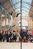 Europe, France, Paris (75), 3rd arrondissement, Le Marais, the 'Carreau du Temple'. April 25th, 2014. Opening day. Acrobatic show on a Chinese Pole by Rafael de Paula. It is a former clothes market that was redeployed in a cultural and sport center in 201