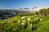 Mountain landscape in spring at Mount Krippenstein, Dachstein area, Upper Austria, Austria, Europe