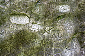 ' Historic rock engravings in ''Notgasse'', gorge in the Dachstein area, Styria, Austria, Europe'