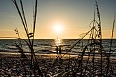 A couple going for a stroll along the beach at sunset, the Gulf of Mexico, Boca Grande, Florida, USA