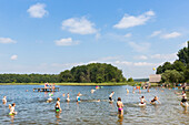 Swimming, diving into water, beach, playing in the water, lake Granzower Möschen, holiday, summer, swimming, sport, Mecklenburg lakes, Mecklenburg lake district, Granzow, Mecklenburg-West Pomerania, Germany, Europe