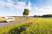 Straße zwischen Penzlin und Neustrelitz, Auto mit Boot auf dem Dach, Feld, Abendlicht, Reise, unterwegs, Mecklenburgische Seenplatte, Mecklenburgische Seen, Neustrelitz, Deutschland, Europa