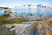 Orange lichens on rocks A rubber dinghy, Zodiac leaves the island Gnalodden Spitzbergen, Svalbard