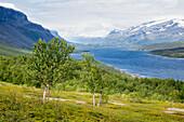 The lake Langas near Saltoluokta, Laponia, Lapland, Sweden. Trekking the Kungsleden.