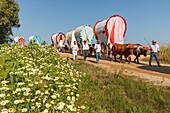 blooming meadow in Spring and caravan of ox carts, El Rocio, pilgrimage, Pentecost festivity, Huelva province, Sevilla province, Andalucia, Spain, Europe
