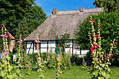 ' thatched house, school museum, Middelhagen, Rügen Island, Mecklenburg-Western Pomerania; Baltic Sea, Germany, Europe'