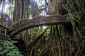 Very beautiful carved bridge with overgrowing trees, Sacred Monkey Forest Sanctuary, Ubud, Bali, Indonesia, Southeast Asia, Asia