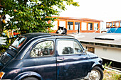 Cat rests on the roof of an old car in front of old barge, Center of Amsterdam, Netherlands, Europe