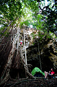 AIWA, FIJI. After climbing up, Joe Orteaga stands on a massive network of roots on an uninhabited island in the South Pacific. Dr. Sharyn Jones watches from below.