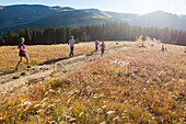 Friends run together through a meadow on a track towards Elk Ridge, White River National Forest, Colorado.