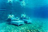 Two Men Lying On Bed Underwater In Pool