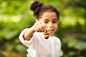 Close-up Of A Girl's Hand Holding Acorn