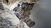 'a view of the breathless ladder on the via ferrata ''bocchette alte'' in the Brenta group, Trento province, Trentino Alto Adige, Italy, Europe'