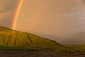 Ein Regenbogen, der im Licht des Sonnenuntergangs gebildet wurde, nach einem starken Sturm kommt aus den grünen Bergen an der Küste Dyhrolaey, Island