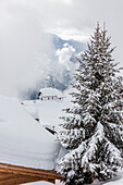 Tree covered with snow frames the alpine church Bettmeralp district of Raron canton of Valais Switzerland Europe
