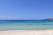 Crystal clear water on the beach in Tizzano, South Corsica, Corsica, Southern France, France, Southern Europe, Europe