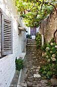 Alley at the UNESCO town of Berat, Berat, Berat, Albania