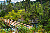A man riding a mountain bike across a foot bridge on the Johnson Pass Trail, Southcentral Alaska, USA