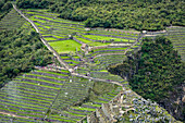'Aerial view of Machu Picchu Citadel; Cusco Region, Peru'