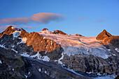 Wilder Pfaff und Zuckerhütl im Morgenlicht, Stubaier Höhenweg, Großer Trögler, Stubaier Alpen, Tirol, Österreich