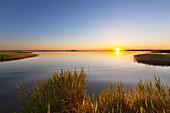Achterwasser at Lieper Winkel, Usedom, Baltic Sea, Mecklenburg-West Pomerania, Germany