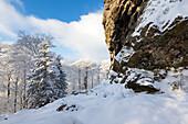 "At Feldstein rock, rock formation ""Bruchhauser Steine"", near Olsberg, Rothaarsteig hiking trail, Rothaargebirge, Sauerland region, North Rhine-Westphalia, Germany"