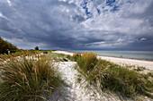 Baltic coast at Kuehlungsborn, Mecklenburg-Vorpommern, Germany