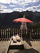 Two pigs sunbathing on a wooden campbed in front of a mountaineous landscape, Kappl, Tyrol, Austria