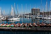 'Tel Aviv marina with numerous sailboats moored; Tel Aviv-Yafo, Tel Aviv District, Israel'