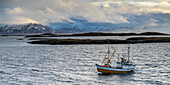 'A commercial fishing boat in the atlantic ocean in the Arctic with a view of the mountianous landscape; Norland, Norway'