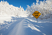 A road and trees covered with deep snow and a yellow sign saying dead end, Alaska, United States of America